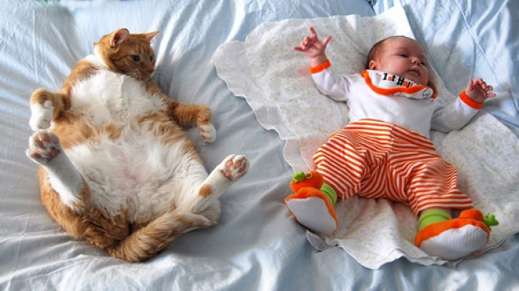 kids-with-cats-605_04613800