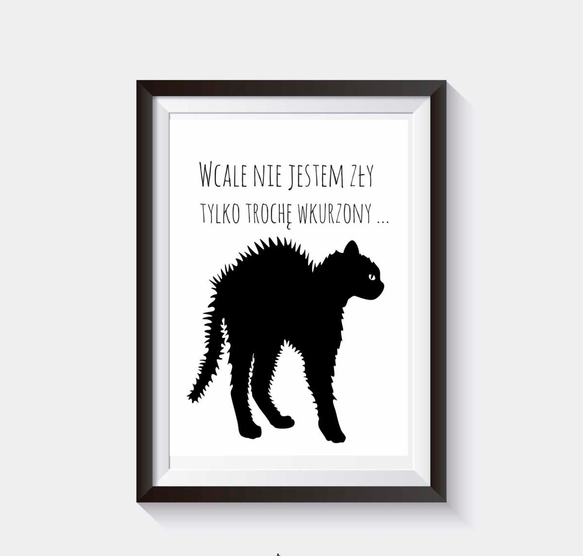 Plakat na ścianę koty grafika do pobrania