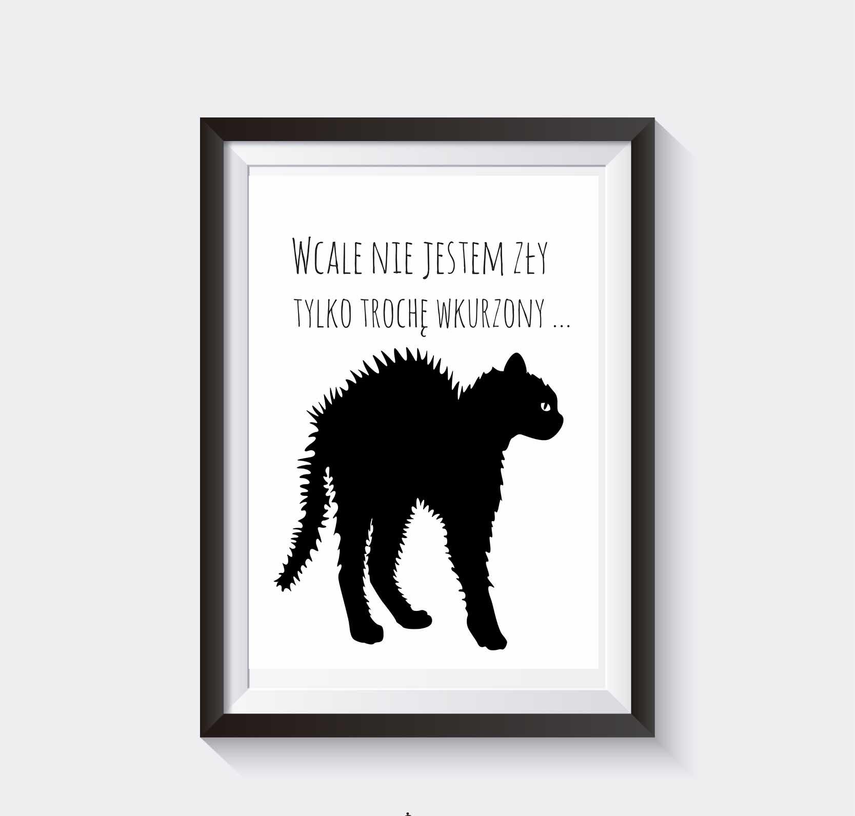 Plakat Na ścianę Koty Grafika Do Pobrania Superplakatpl