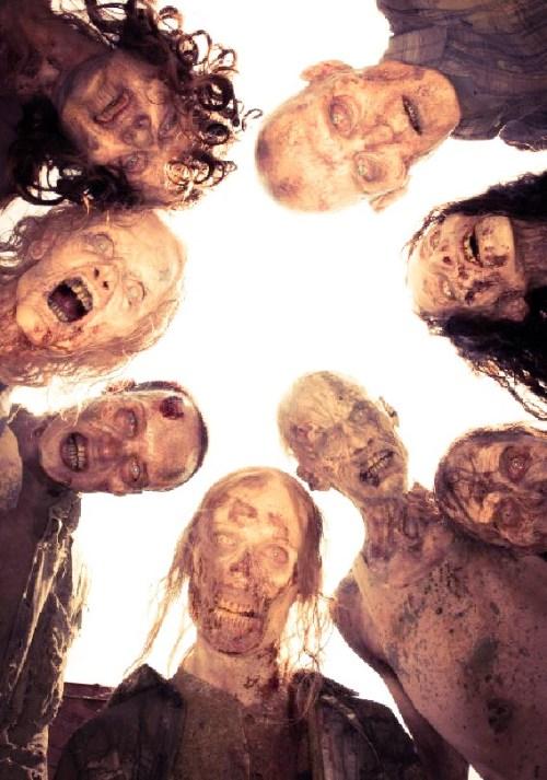 affiche The Walking Dead Universe