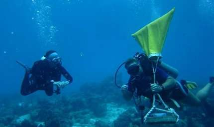 DiveCaching Contest 2013