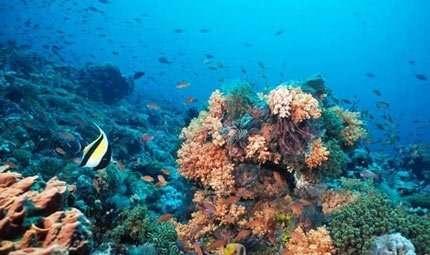 Italia e Canada alla scoperta degli oceani