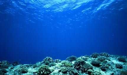 Oceani, il tempo sta per scadere
