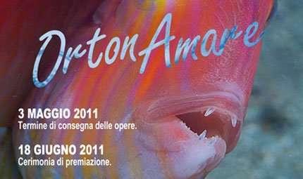 OrtonAmare 2011