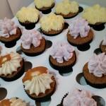 Minicupcakes variados