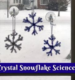 Make Your Own Crystal Snowflakes! [ 1289 x 1800 Pixel ]