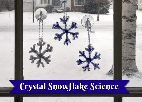 small resolution of Make Your Own Crystal Snowflakes!