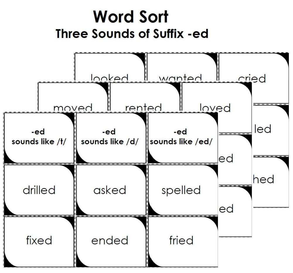 medium resolution of Prefix and Suffix Worksheets