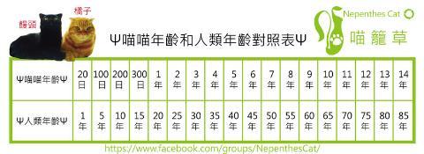 102年百歲年齡對照表 102- 102年百歲年齡對照表 102 - 快熱資訊 - 走進時代