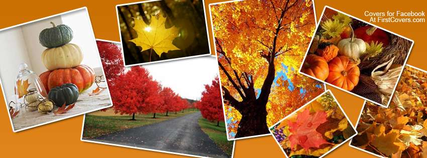 Cute Kids Wallpapers For Facebook Autumn Collage Cover Hd Wallpapers