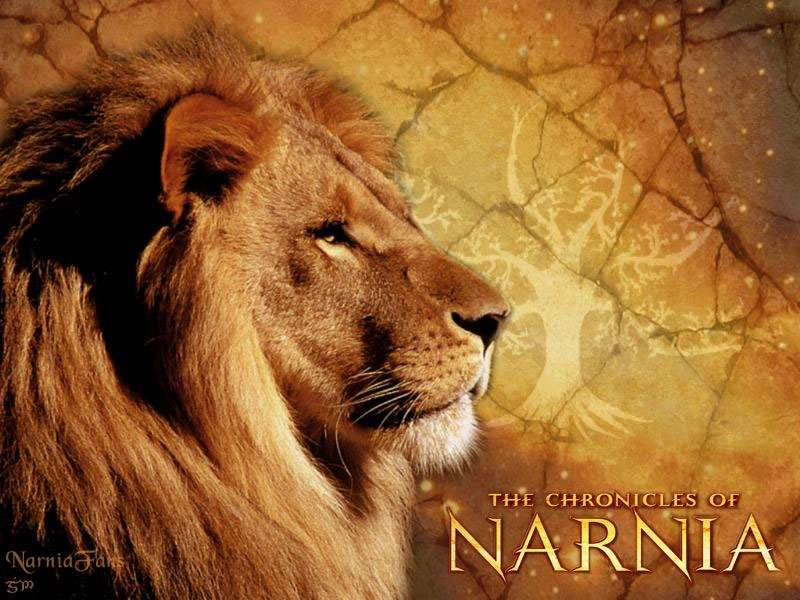 Cute Stitch Wallpaper Quotes The Chronicles Of Narnia Aslan Hd Wallpapers