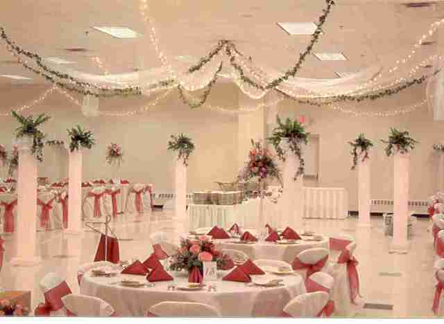 Wedding Hall Decorations - Tulle and Twinkle Lights