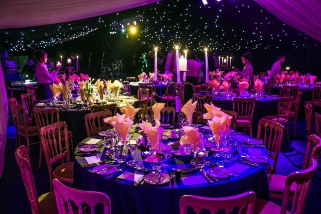 Purple, Pink and Blue Holiday Season wedding under the stars (twinkle lights)