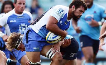 Chris Alcock has agreed to play for the Brumbies