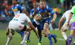 Pieter-Steph du Toit of the Stormers will play his 50th Super rugby game for the team