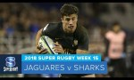Super Rugby, Super 15 Rugby, Super Rugby Video, Video, Super Rugby Video Highlights ,Video Highlights, Jaguares, Sharks , Super15, Super 15, SuperRugby