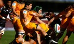 Tomas Cubelli was instrumental in the Jaguares' victory over the Sharks at Kings Park, Durban