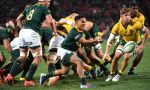 Herschel Jantjies of the Springboks during the The Rugby Championship match between South Africa and Australia at Emirates Airline Park