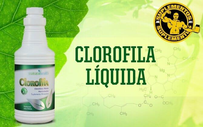 Clorofila Líquida:  Efeitos, Como Tomar, Preço e Onde Comprar