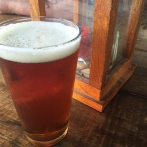 Ursa - American Ale