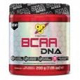 BSN Bcaa DNA