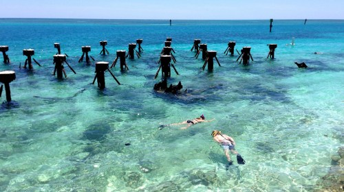 Dry Tortugas Florida Rejuvenating Destinations