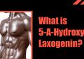 5-A-Hydroxy-Laxogenin