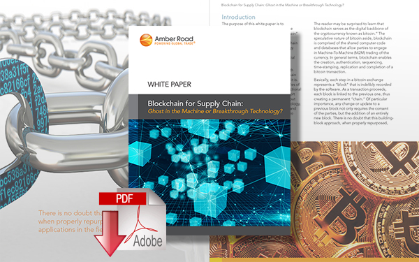 Download Blockchain for Supply Chain: Ghost in the Machine or Breakthrough Technology?