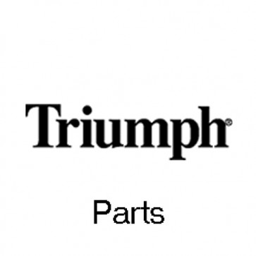 Triumph 9002282 Switch for the 6550EP Cutter