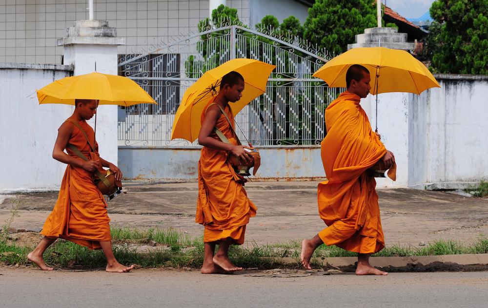 Buddhist Monks at Western Universities