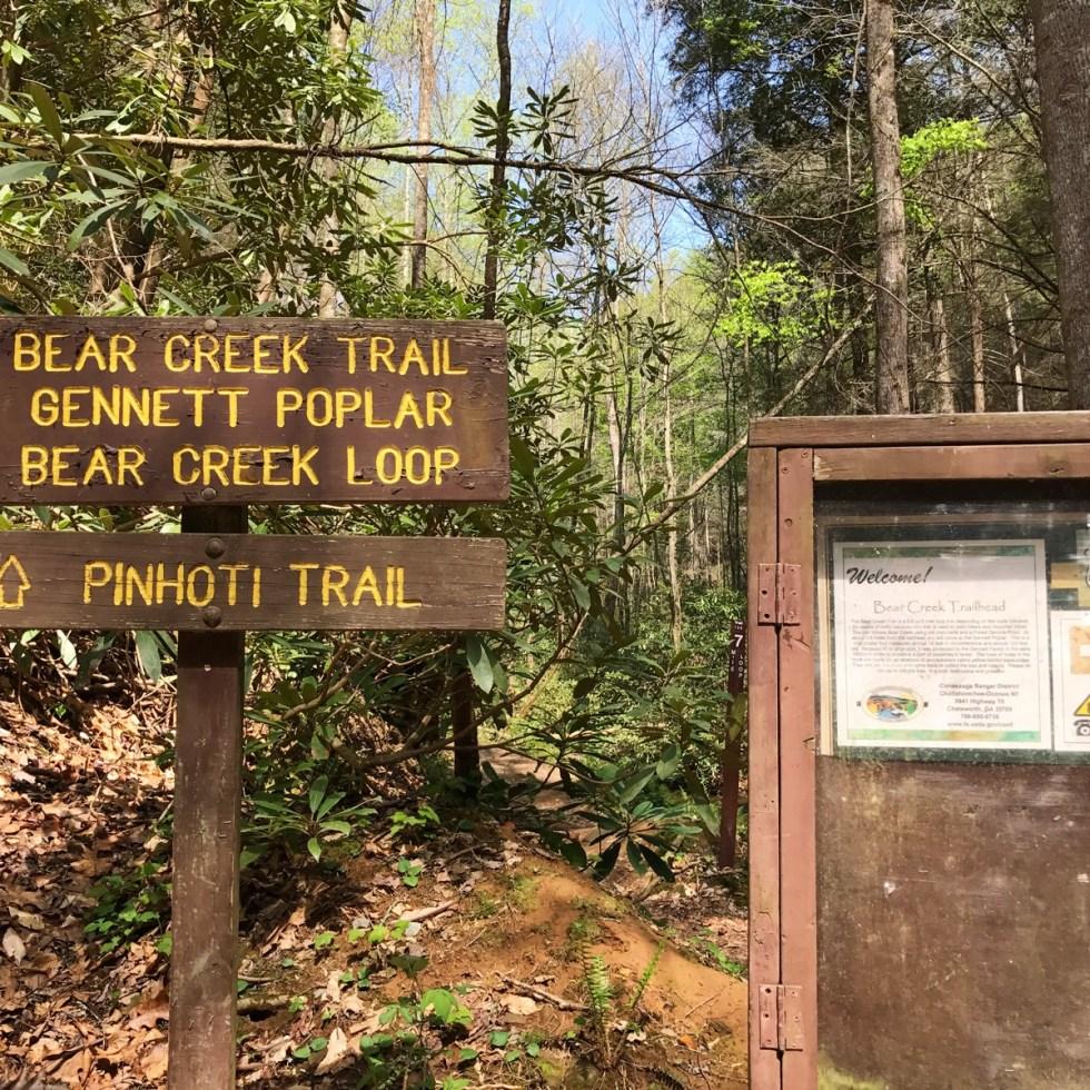 Bear Creek TH