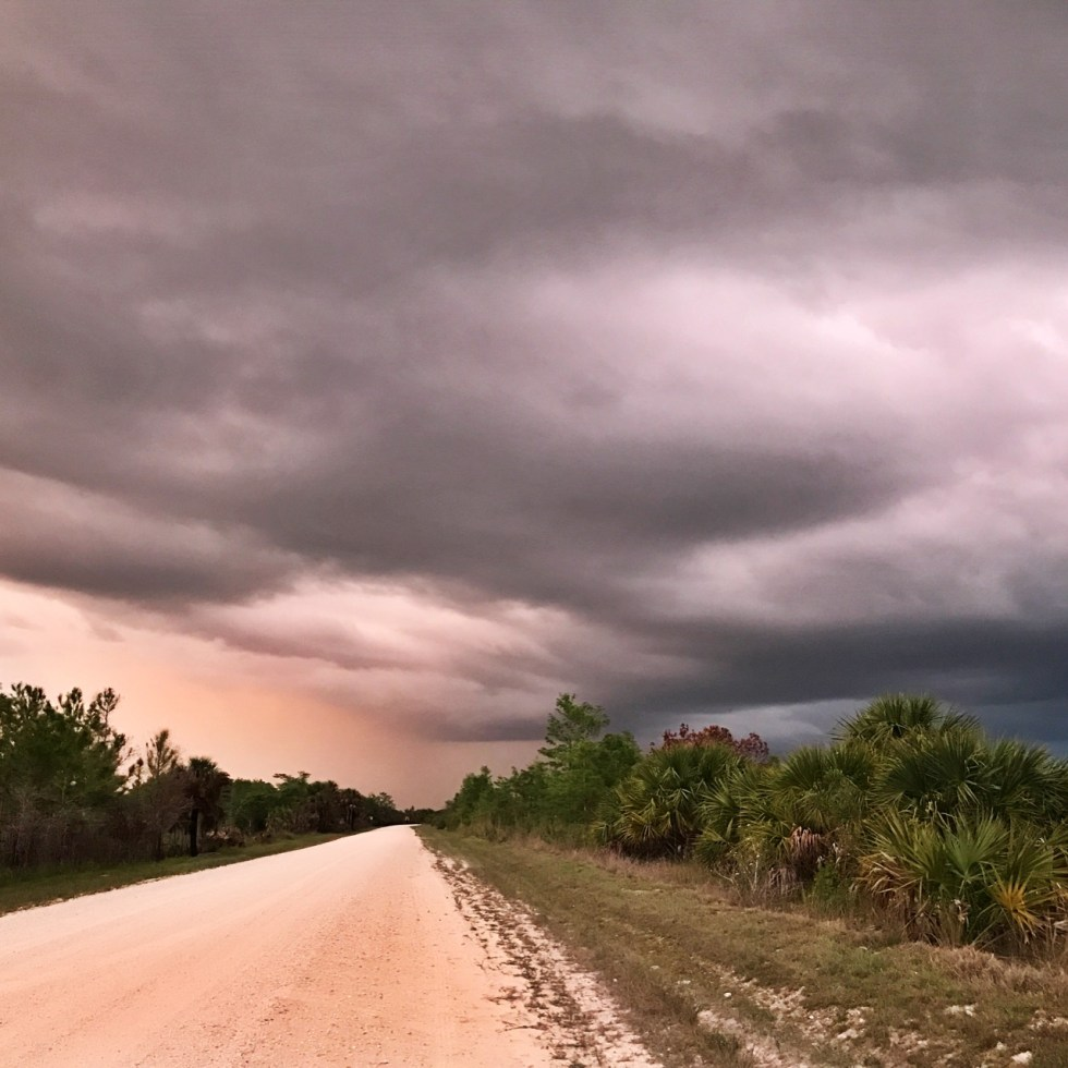 Stormy Sunset In Big Cypress