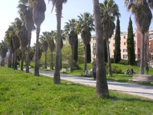Una Veduta del Parco Dapelo