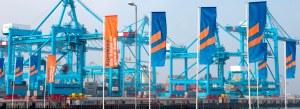 Il terminal Maersk di Maasvlakte 2 il giorno dell'inaugurazione.