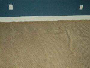 Buckled Carpet