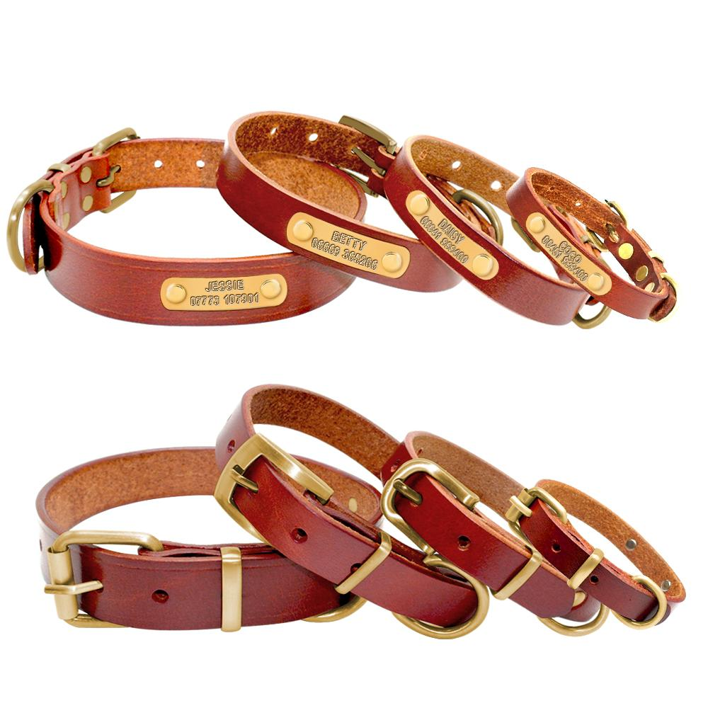 Deluxe Leather Personalized Dog ID Collar