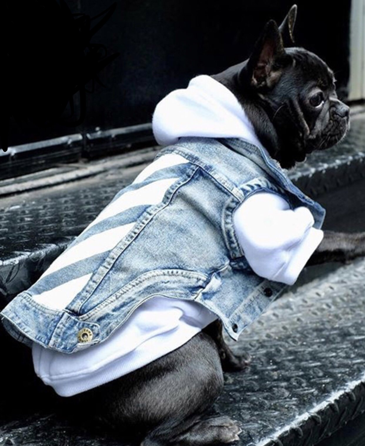 Woof-White Denim Jacket