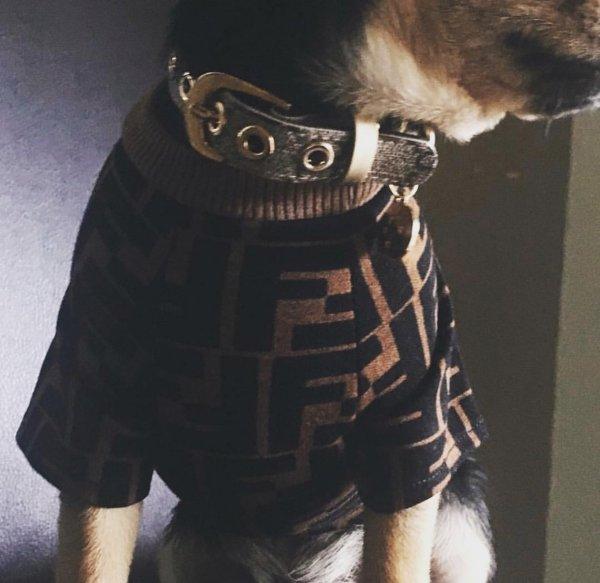 Fur Baby Dog Tee