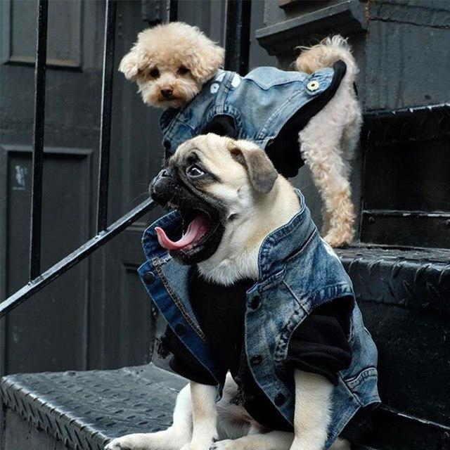 Woof-White Denim Jacket