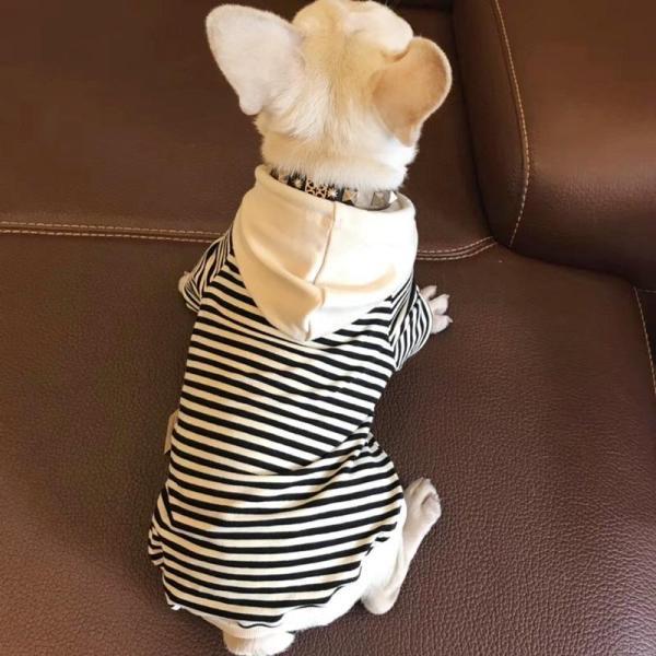 Hudson Stripe Hoodie