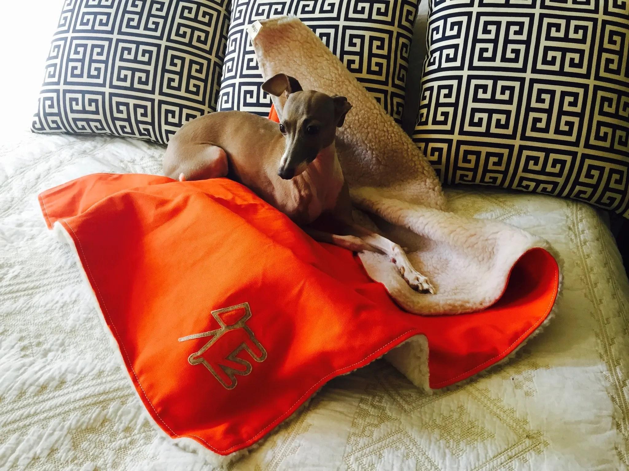 Canvas Fleece Dog Blanket
