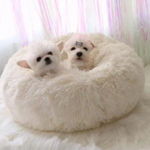 Macaron Dog Bed