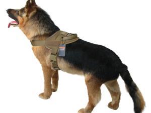 1050D Vortex Tactical Dog Harness