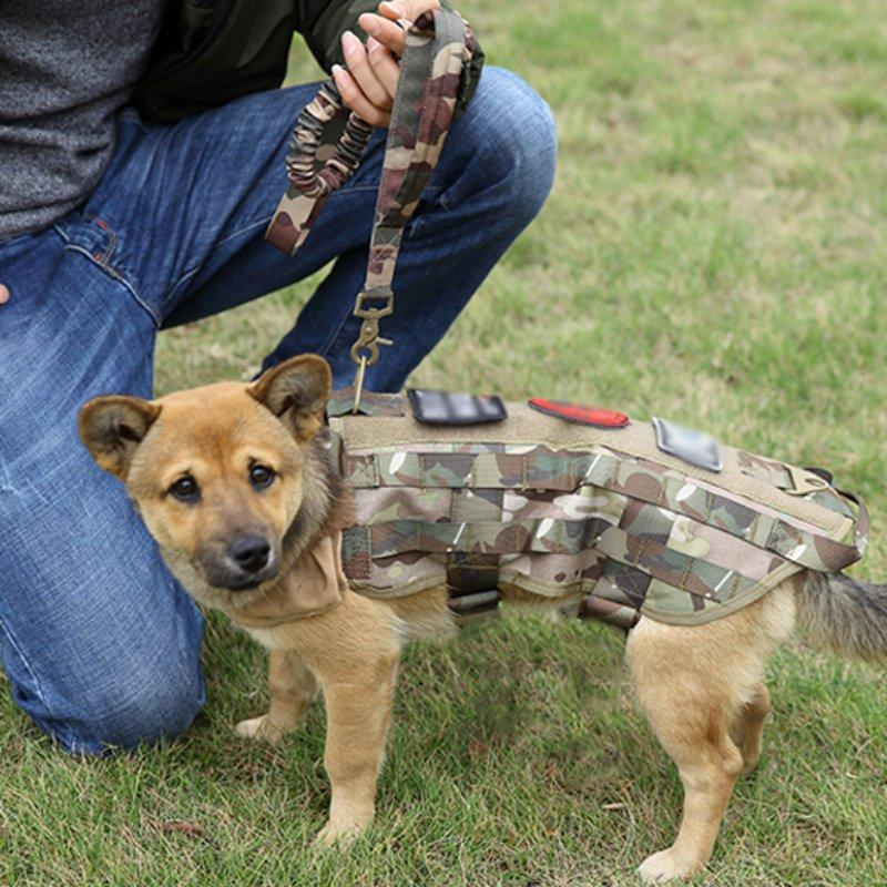 Tactical Dog Training Rope