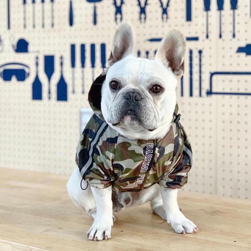 A Barking Pup Camo Dog Windbreaker
