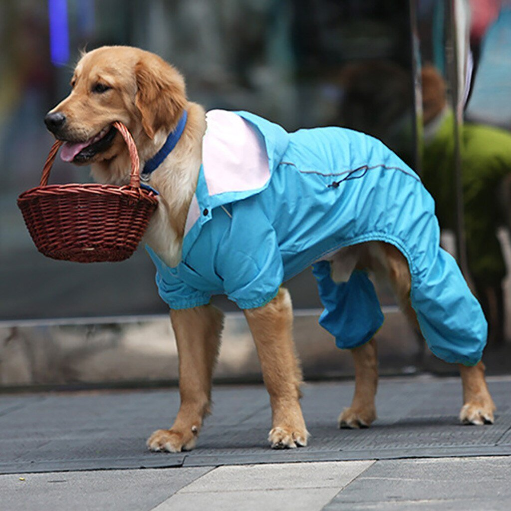 Rain Rebel Dog Coat - Blue