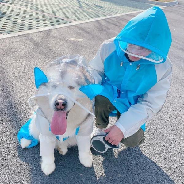 Copenhagen Dog Raincoat