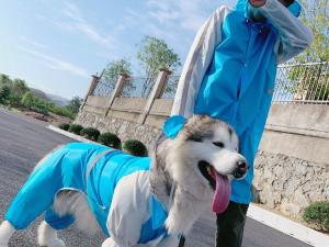 Copenhagen Dog Raincoat