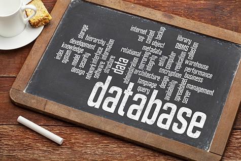 database website setup