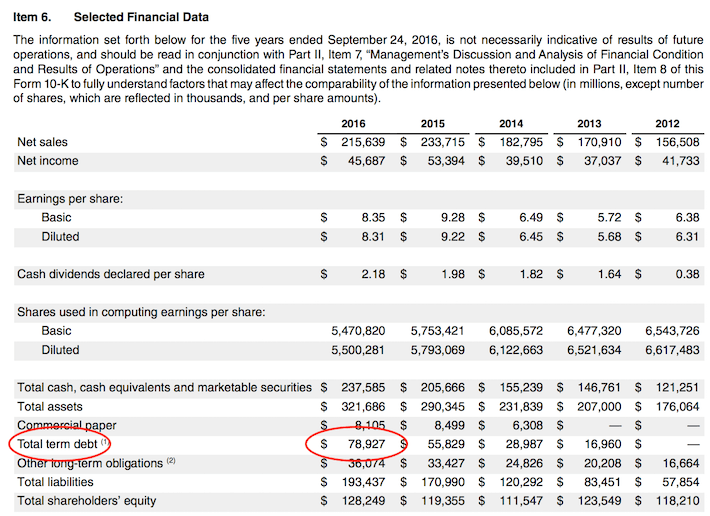 AAPL Apple Total Term Debt